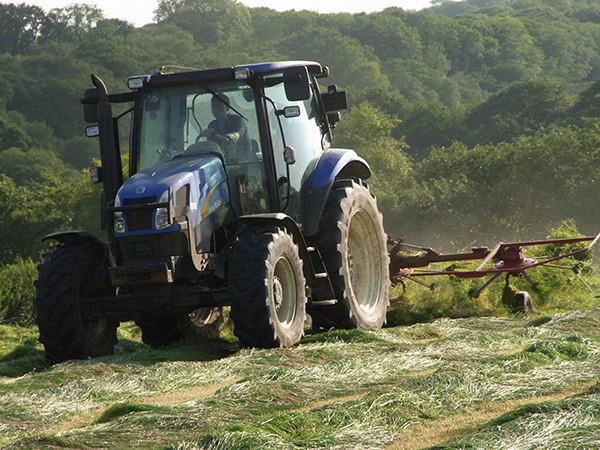 The farmers at Forda Farm B&b working hard to turn the hay in the fields.
