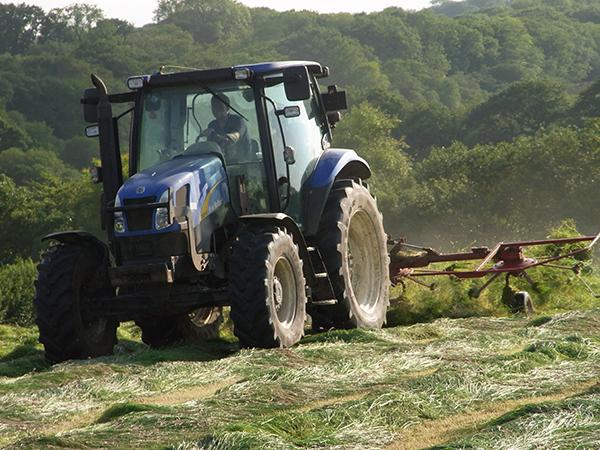 Enjoy a last min holiday to North Devon  here at Forda Farm.